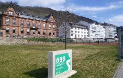 Wilhelm_Hofmann_Gymnasium_St._Goarshausen